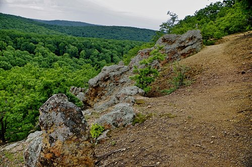 Mihael Naša mala stenovita planina