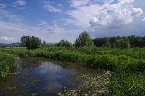 Mihael Vojvođanski pejzaž