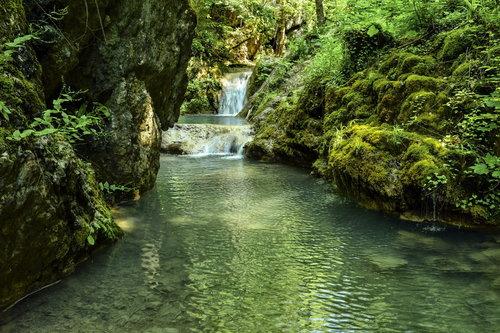 MilosKaraklic Banjski potok