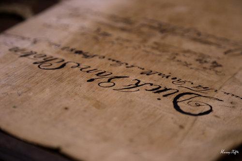 MilosPadjen Book