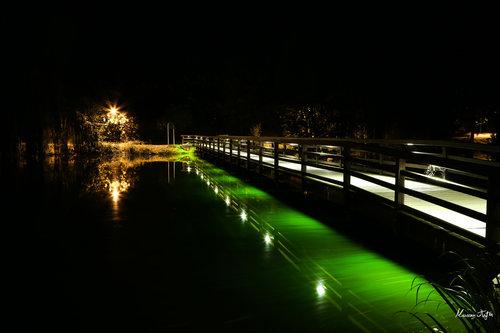 MilosPadjen Most