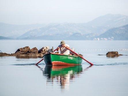 MirBal veslač