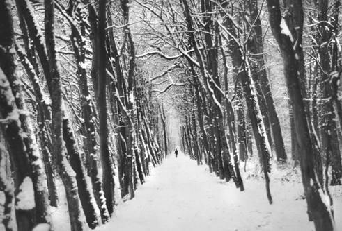 "Natasa ""Sama v zimskem jutru"""