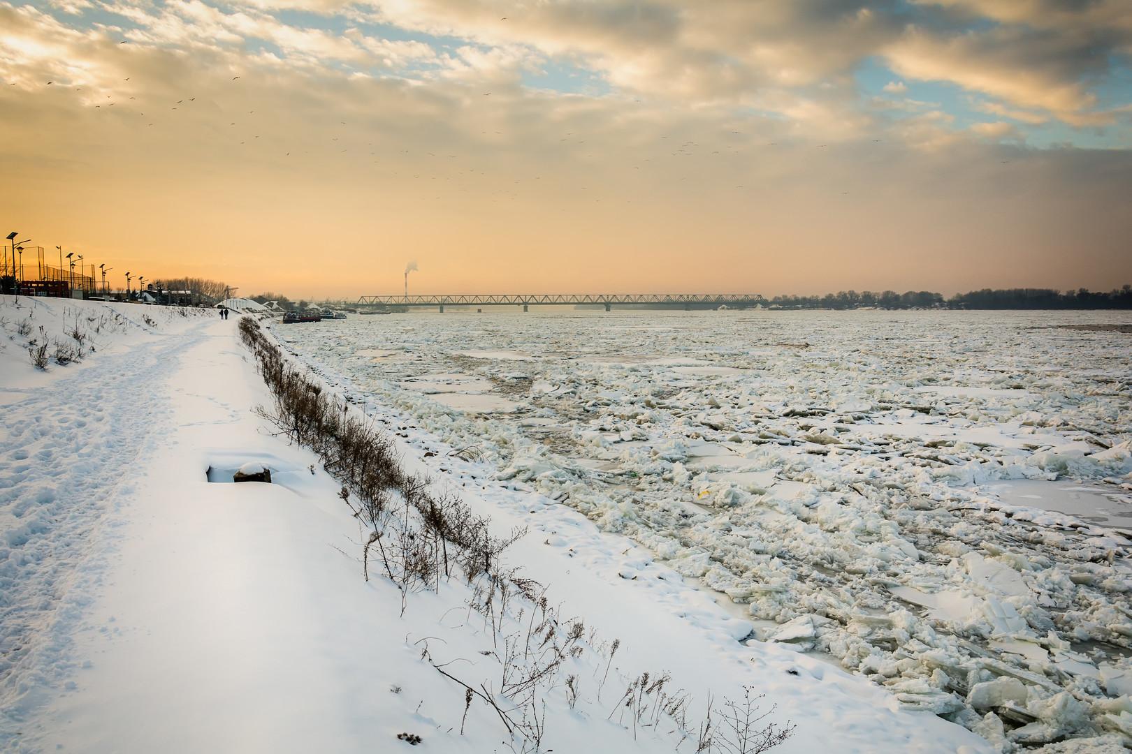 Ada Huja i zaleđeni Dunav