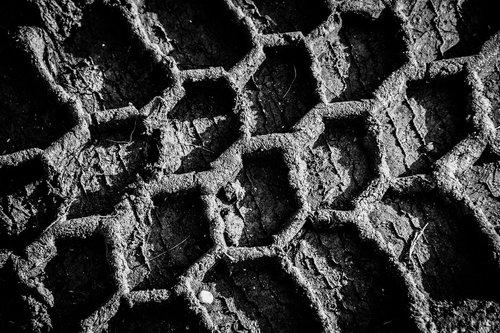 NenadBorojevicFoto Honeycomb ( Saće )