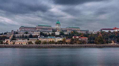 Nenad_Ristic Buda Castle...