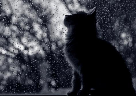 NeoSky Rainy Mood