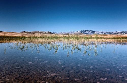 Neonka Riblje jezero