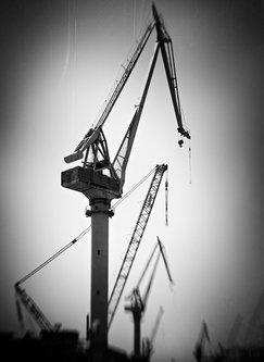 Nermin Cranes
