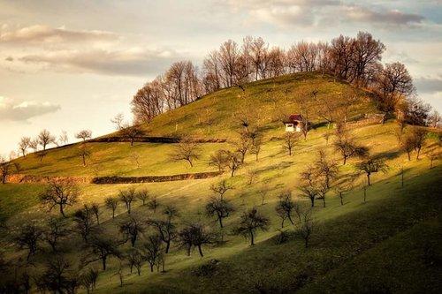 Nermin Bosnian Tuscany :)