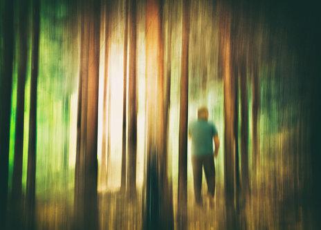 Nermin U šumi