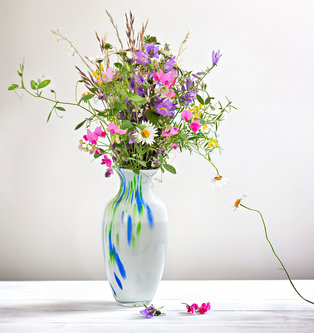 Nermin Field Flower