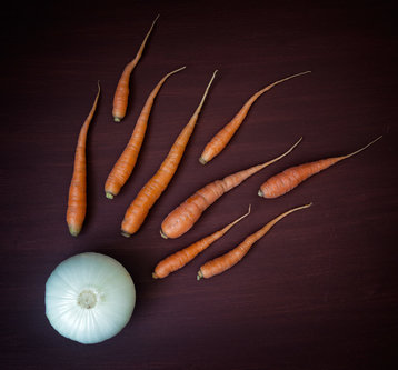 Nermin Vegetable reproduction