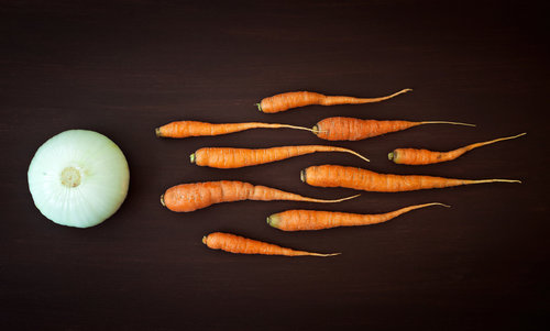 Nermin Vegetable reproduction B