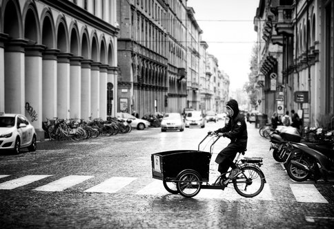 Nermin Bologna - transport bike