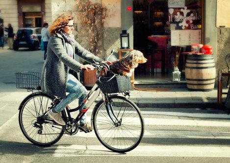 Nermin Dog - Bike Taxi :)