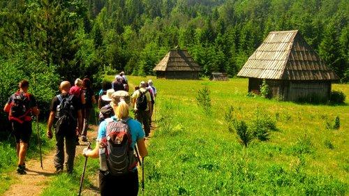 NikolaRadojicic Hajdemo u planine