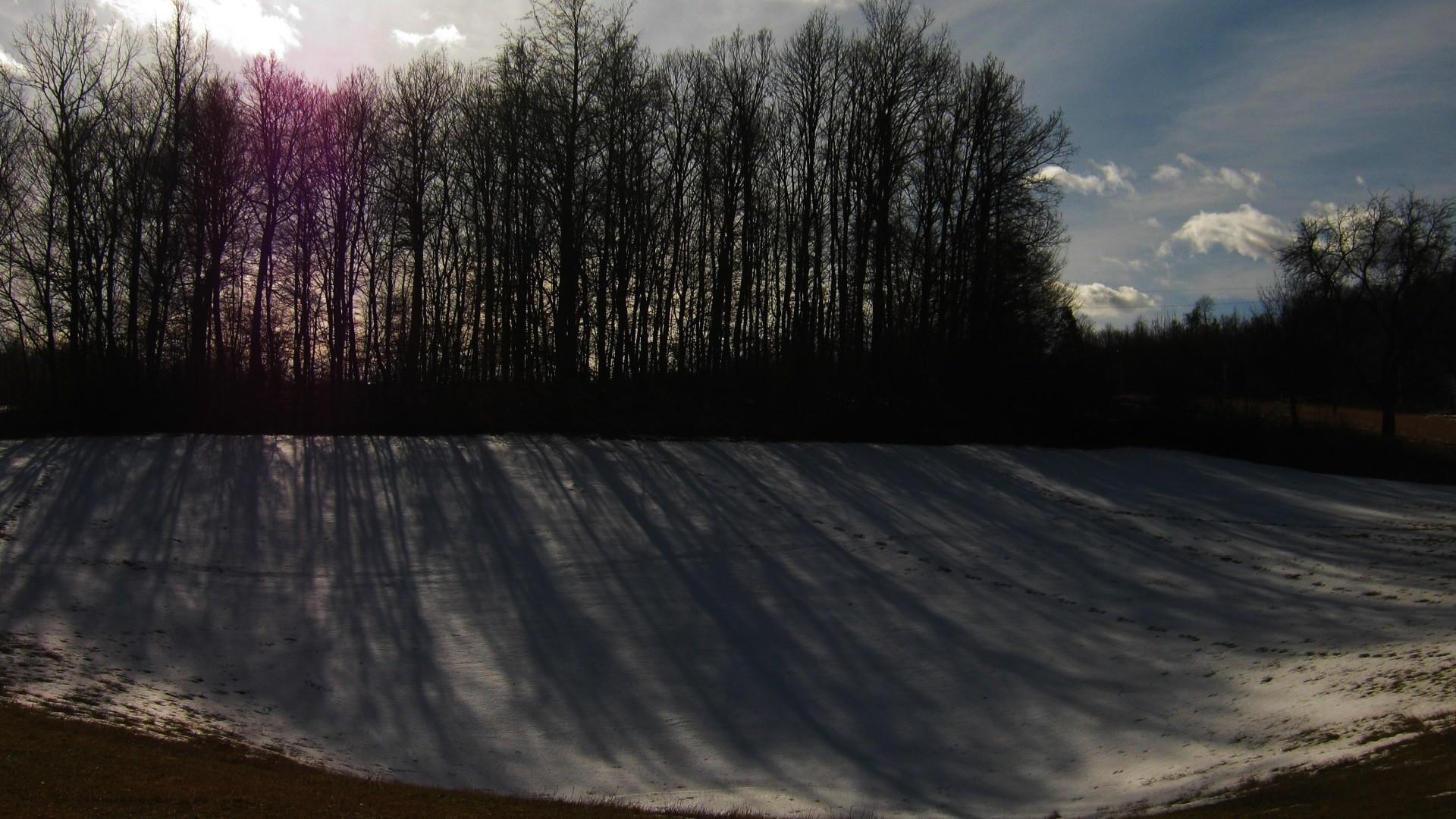 Senka na snegu