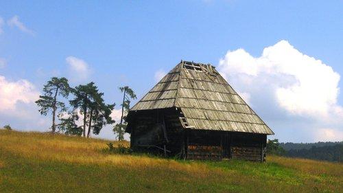 NikolaRadojicic Zlatibor