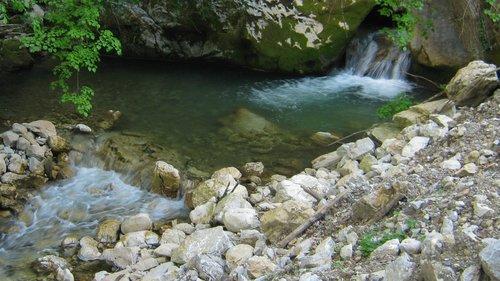 NikolaRadojicic Reka