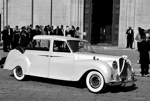 NikonD750 Malteska svadna