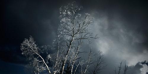Nordi Zimski dani