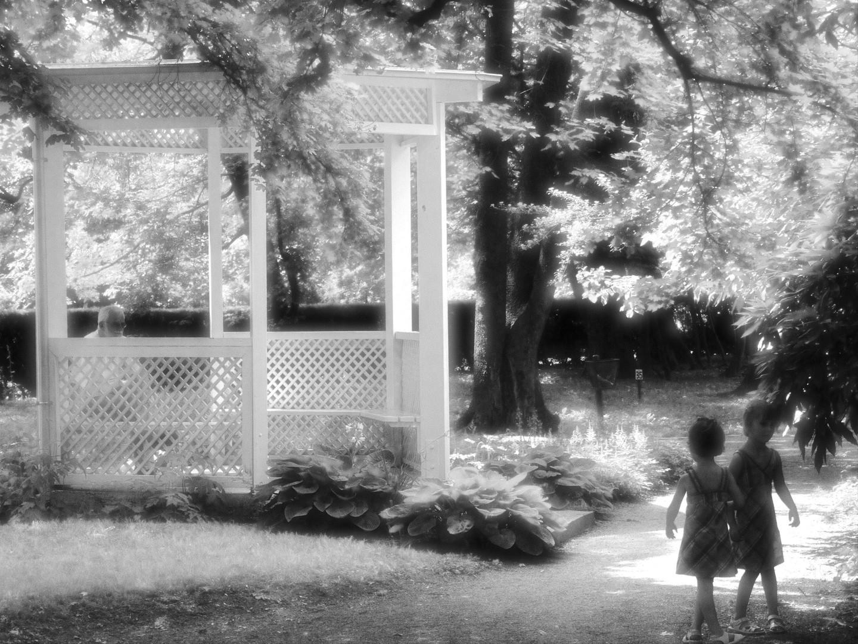 Vrt tišine