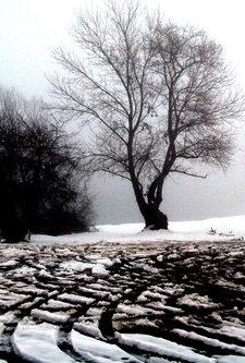 Ogimaster Zima na jezeru
