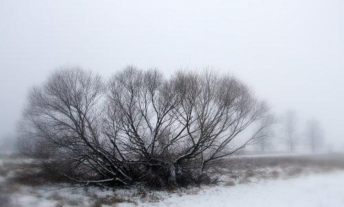 Ogimaster Zima u Žerjavincu