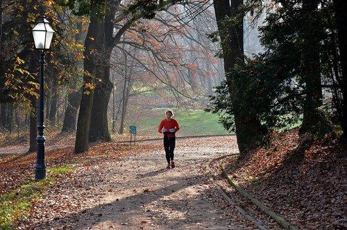 Ogimaster Jesenji fitness
