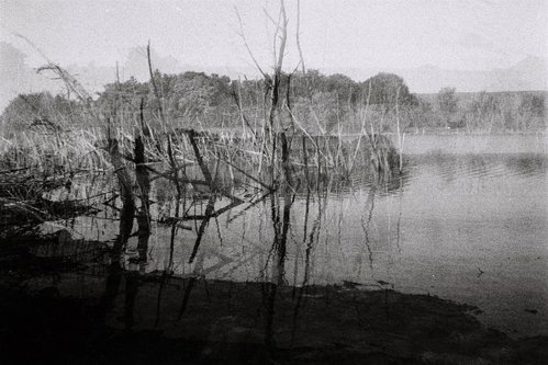 Oljaolja Jezero 1
