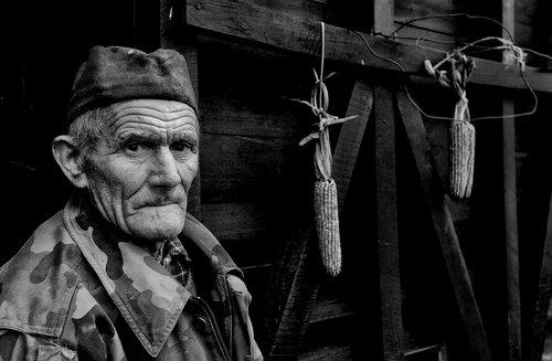 Pajo-foto Milutin