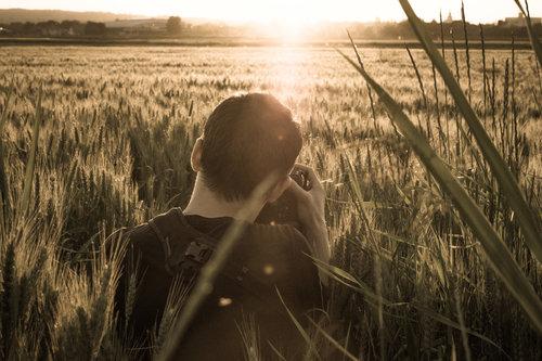 Pukylly Foto-lovac u žitu