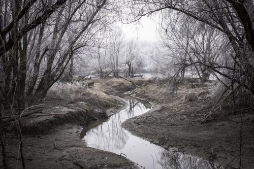 Pukylly Zimski pejzaž