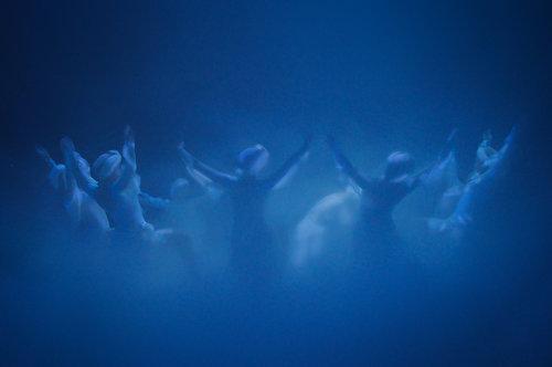 Rankoni Radjanje labuda