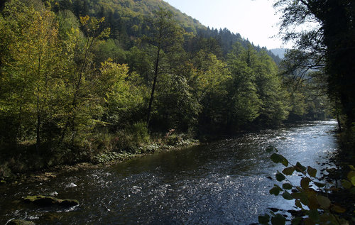 ReneKos potok