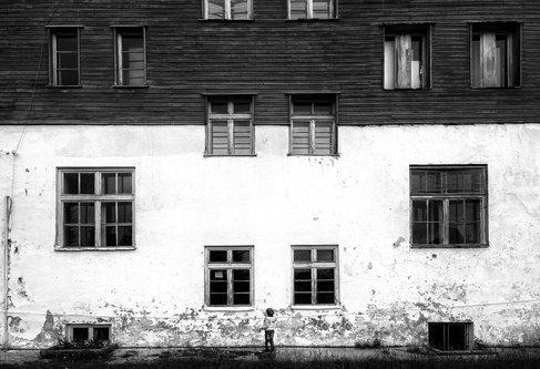 Shljivo Прозори