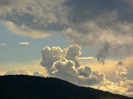 Sima33 Oblak