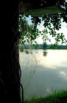 Sima33 Pogled kroz ribarsku mrežu