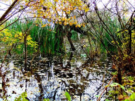 Sovijaticar Jesen