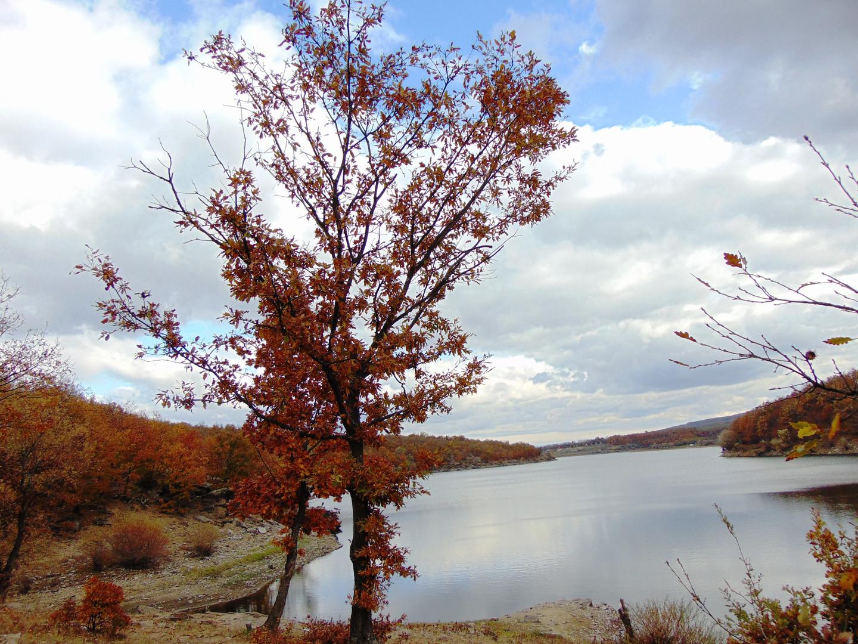 Hidden world/Autumn on Radan mountain