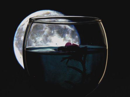Sovijaticar Drowning moon