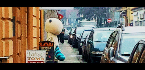 Stalker Zemunske ulice...