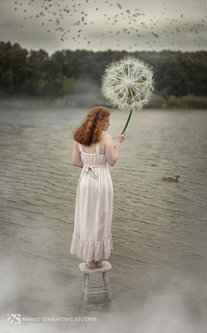 Stamat The Dandelion Girl 2