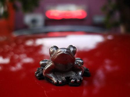 Steva Engleski žabac