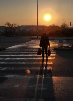 Steva Na pešačkom prelazu