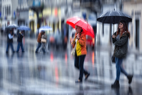 TamaraRi Colors in a rainy day