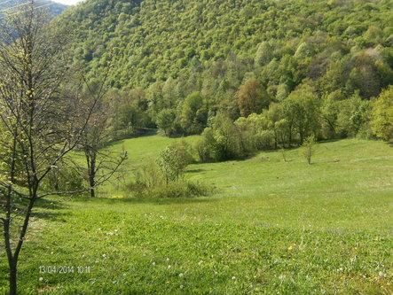 Taxan Dolina