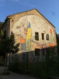 Taxan Mostarski grafit
