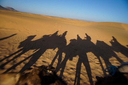 Thalabai Into the desert